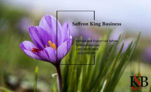 Verkauf und Export von Safran