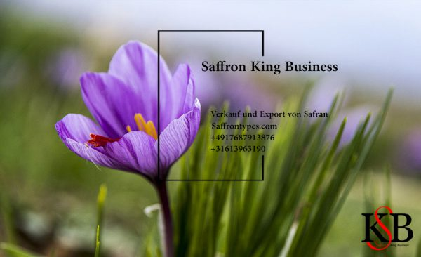 Saffron King Business
