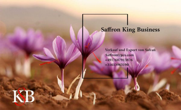 Quality of first-class saffron