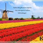 Preis für iranischen Safran in den Niederlanden